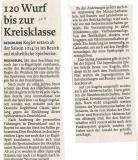 140131-120-Kegeln-im-Bezirk
